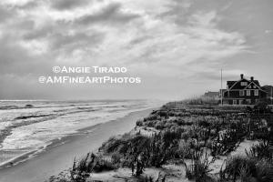 Labor Day Sale - 15 Percent Off All Art Prints By Angie Tirado - Fine Art Photographs